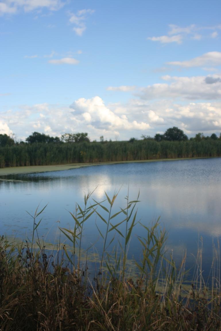 Reflections: Weekly Photo Challenge