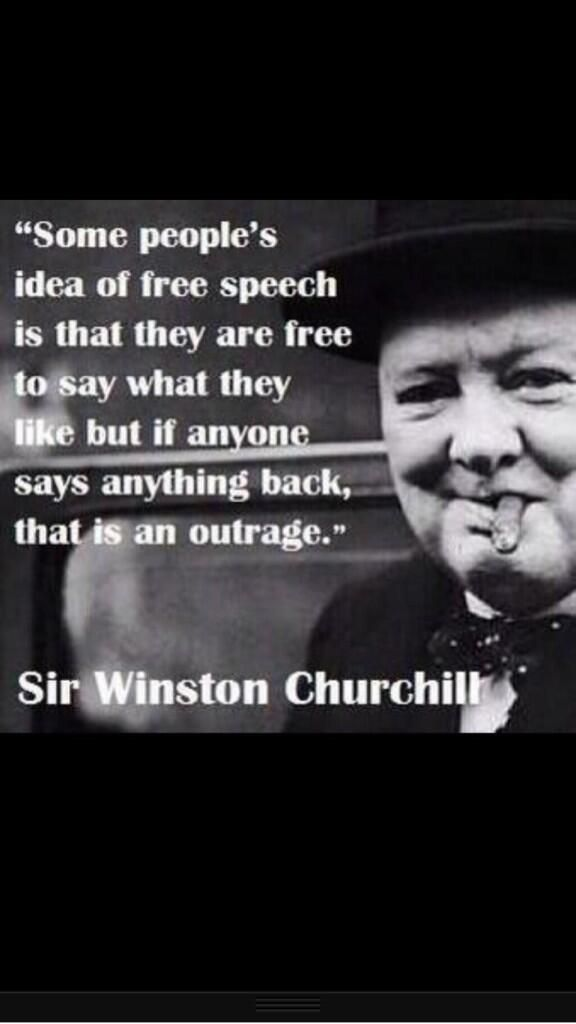 Freedom of Speech: I'll Say What I Want. NaBloPoMo