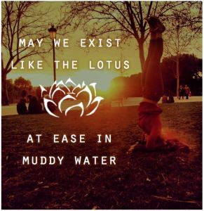 http://www.routewords.com/2014/02/words-on-wednesday-lotus.html