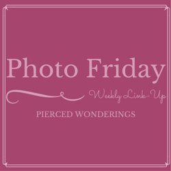 Photo-Friday-Blog-Button-1