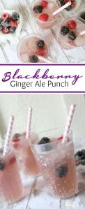 http://lemonpeony.com/sparkling-blackberry-ginger-ale-punch-recipe/