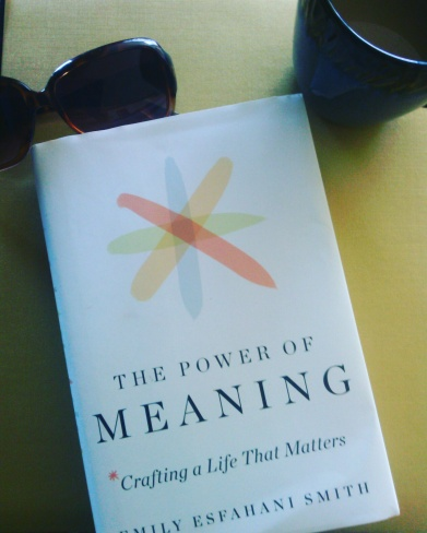 https://chasingdestino.com/2017/06/11/the-power-of-meaning-bookreview/